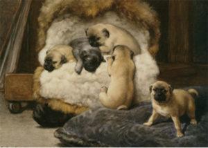 """""""Nido di cuccioli di carlino"""", Otto Eerelman (1839-1926)"""