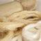 Tutti i vantaggi della fibra di bambù per il tuo carlino